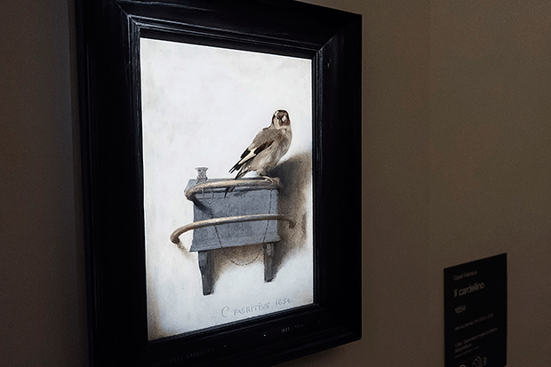 The Goldfinch, Getty