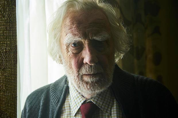 David Hargreaves plays Albert in Wild Bill