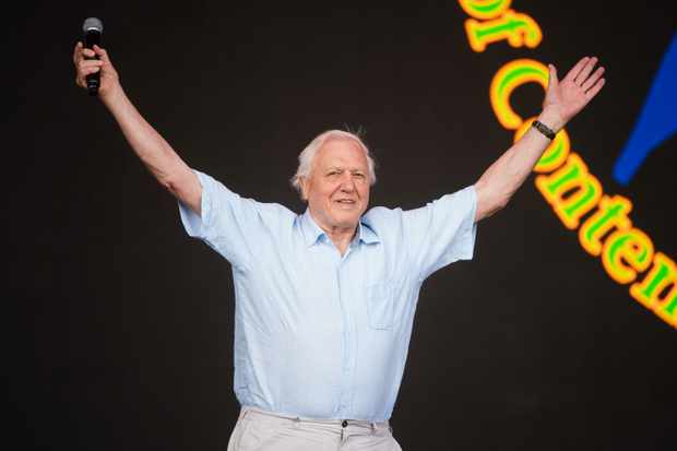 attenborough-glastonbury-