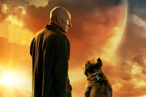 What Does Rt Mean >> Star Trek: Picard teaser: Easter eggs we spotted and what they could mean - Radio Times