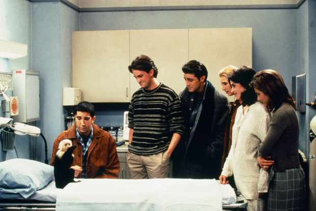 Pictured: (l-r) Katie/Monkey as Marcel, David Schwimmer as Ross Geller, Matthew Perry as Chandler Bing, Matt LeBlanc as Joey Tribbiani, Lisa Kudrow as Phoebe Buffay, Courteney Cox as Monica Geller, Jennifer Aniston as Rachel Green