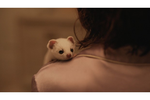 WARNING: Embargoed for publication until 00:00:01 on 26/10/2019 - Programme Name: His Dark Materials - TX: n/a - Episode: n/a (No. 1) - Picture Shows: Pantalaimon, Lyra Belacqua (DAFNE KEEN) - (C) Bad Wolf - Photographer: screen grab