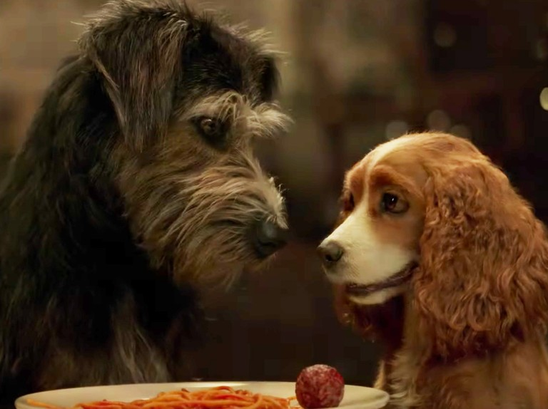 Lady And The Tramp Meet The Cast Of The Disney Remake Radio Times