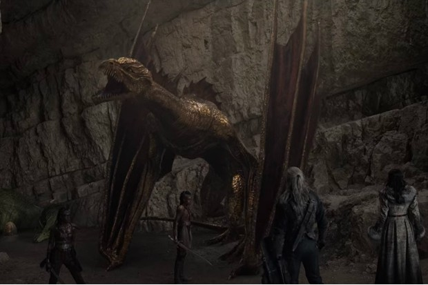 Golden Dragon in The Witcher