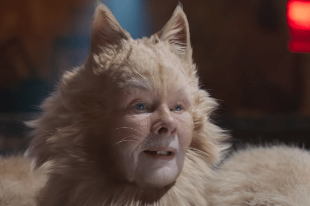 Cats Film Cast And Cat Names Who Are The Actors And