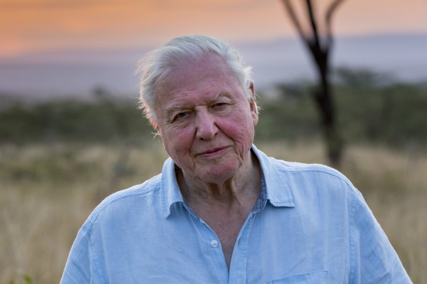 David Attenborough in Our Planet