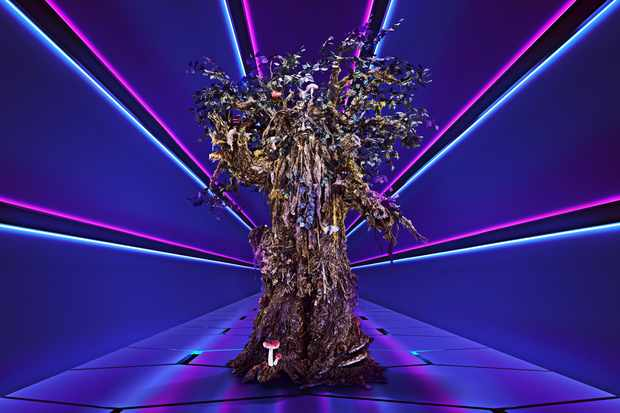 Tree The Masked Singer ©ITV/Bandicoot TV