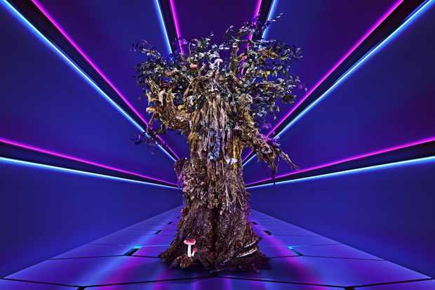 Tree The Masked Singer ©ITV/Bandicoot TV