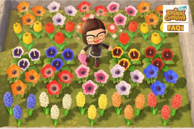How To Make Animal Crossing New Horizons Hybrid Flowers Full