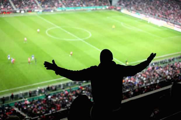 football fan at stadium