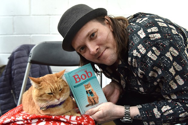 A Streetcat Named Bob cat Bob with James Bowen