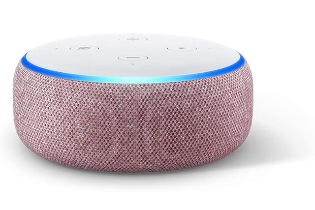 Amazon Echo Dot Plum