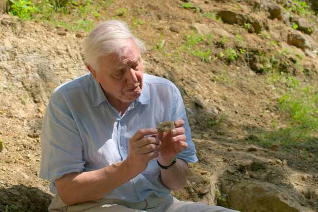 Sir David Attenborough A Life On Our Planet