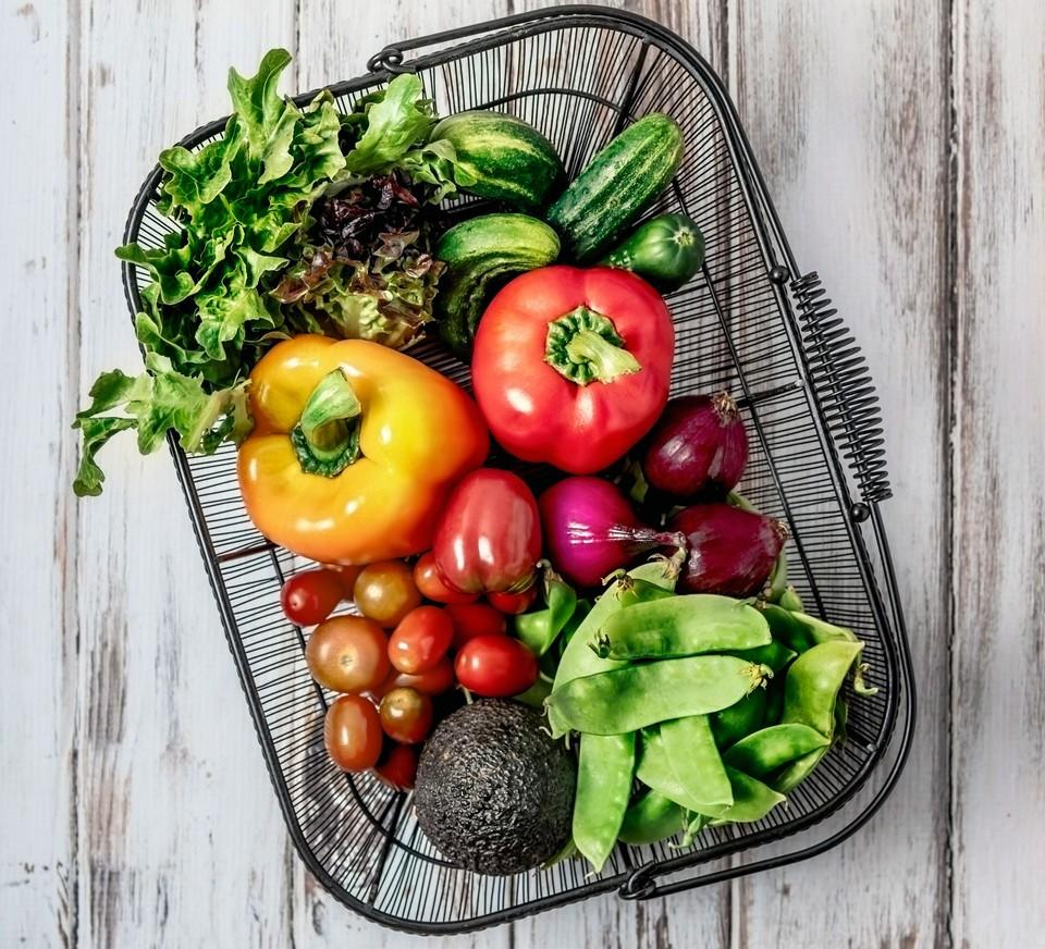 ratings of a vegan diet