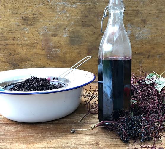 Elderberry syrup in a bottle with some picked elderberries alongside