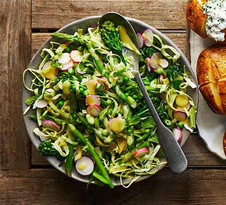 Allotment salad_image