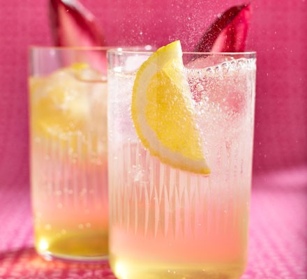 Chicory collins
