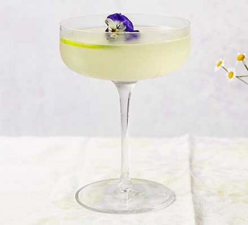 Gimlet in glass with flower