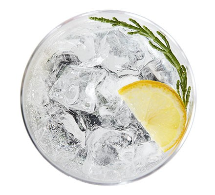 A glass serving a seaside G&T