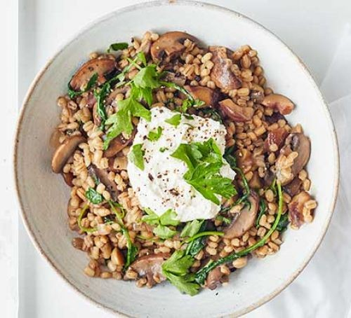 Mushroom, chestnut and pearl barley risotto topped with ricotta
