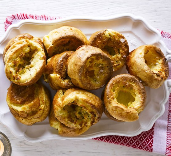 Mustard Yorkies