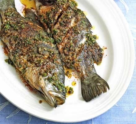 Barramundi with Moroccan spices
