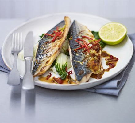 Grilled mackerel with sweet soy glaze