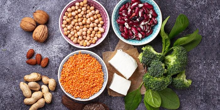 best sources of protein vegan diet