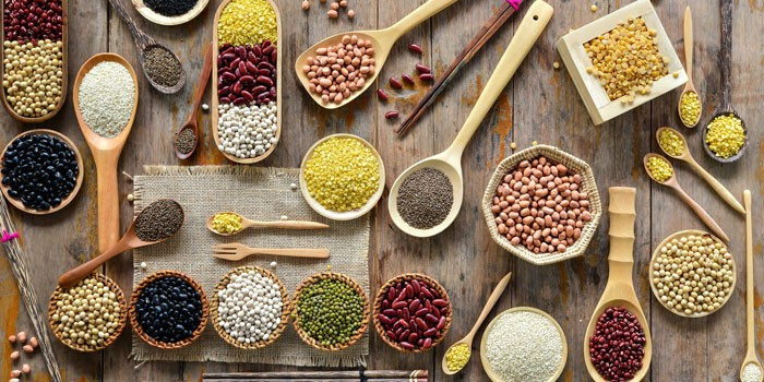 macrobiotic diets forms of protein