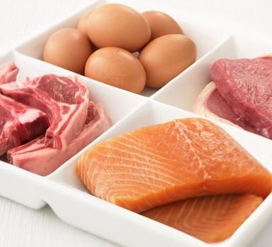 is steak tips allowed on atkins diet
