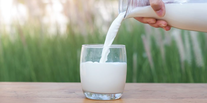 Which milk is right for you? - BBC Good Food