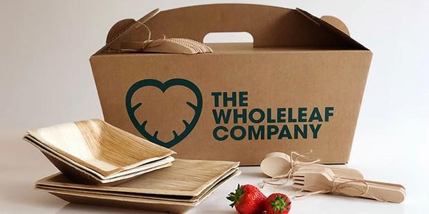 The Wholeleaf Company compostable picnic hamper