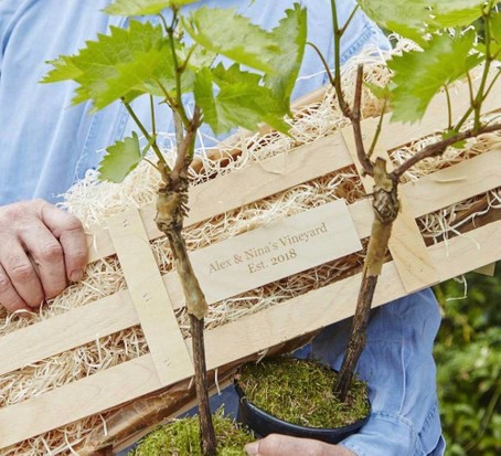 Personalised grapevine set, best wine gifts