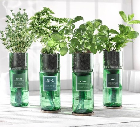 Upcycled wine bottle hydroherb kit, best wine gifts