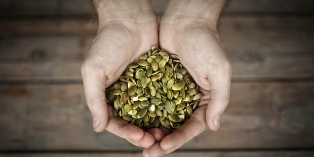 Pumpkin seeds for protein