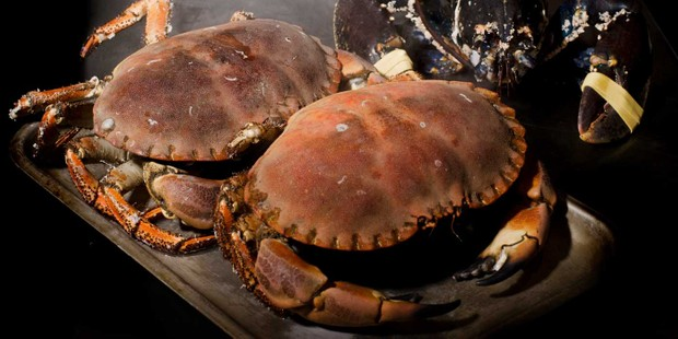 Crabshakk