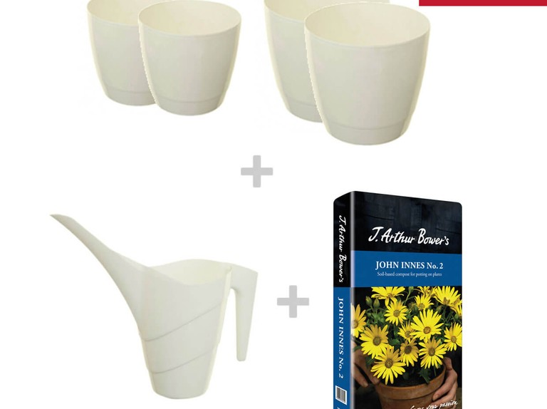 Get this Whitefurze houseplant bundle for just £17.99