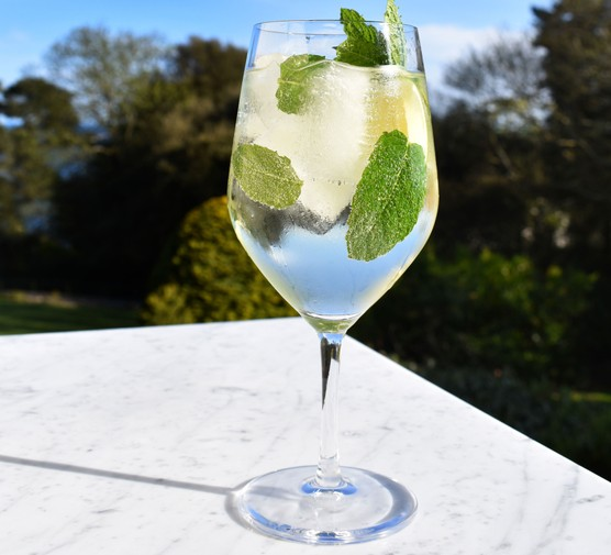 Hugo cocktail in glass with mint leaves