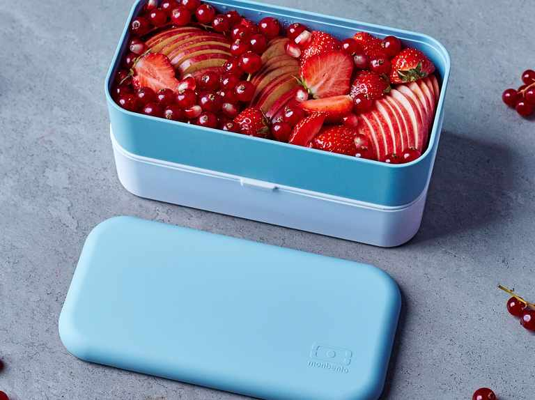 Best bento lunch boxes