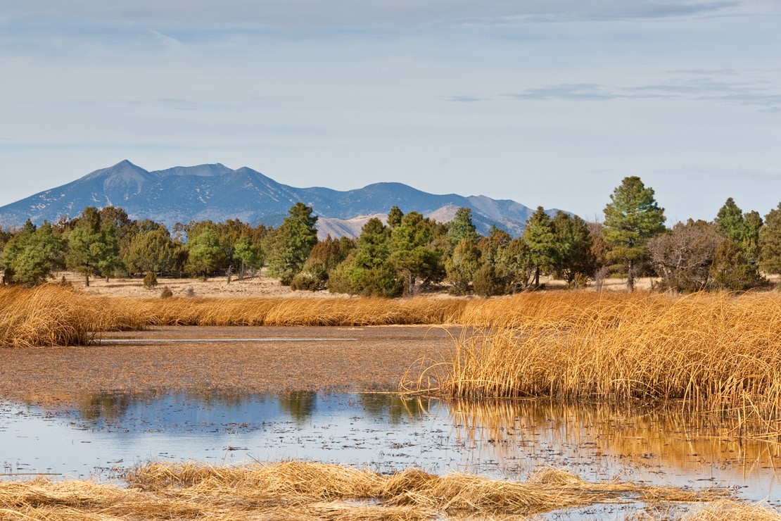 Prime Lake and The San Francisco Peaks, Coconino National Forest, Arizona