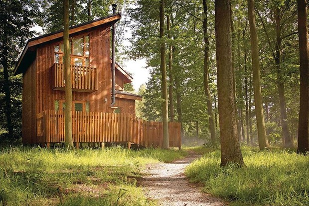 Forest Holidays in Sherwood Forest, Nottinghamshire: A getaway to a luxury cabin?