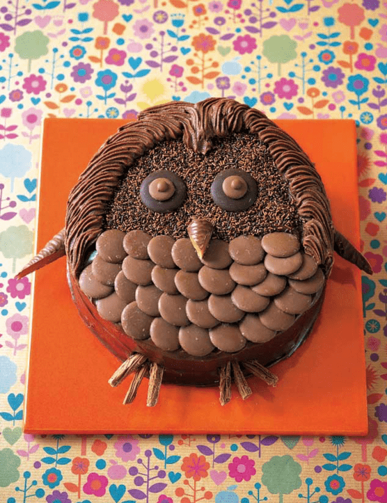Chocolate birthday wise owl cake for kids