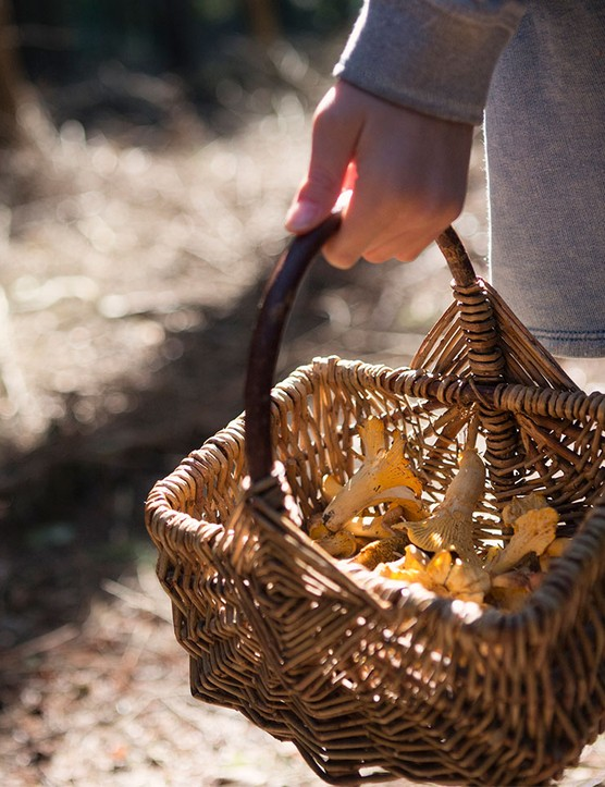 How to forage safely with your child