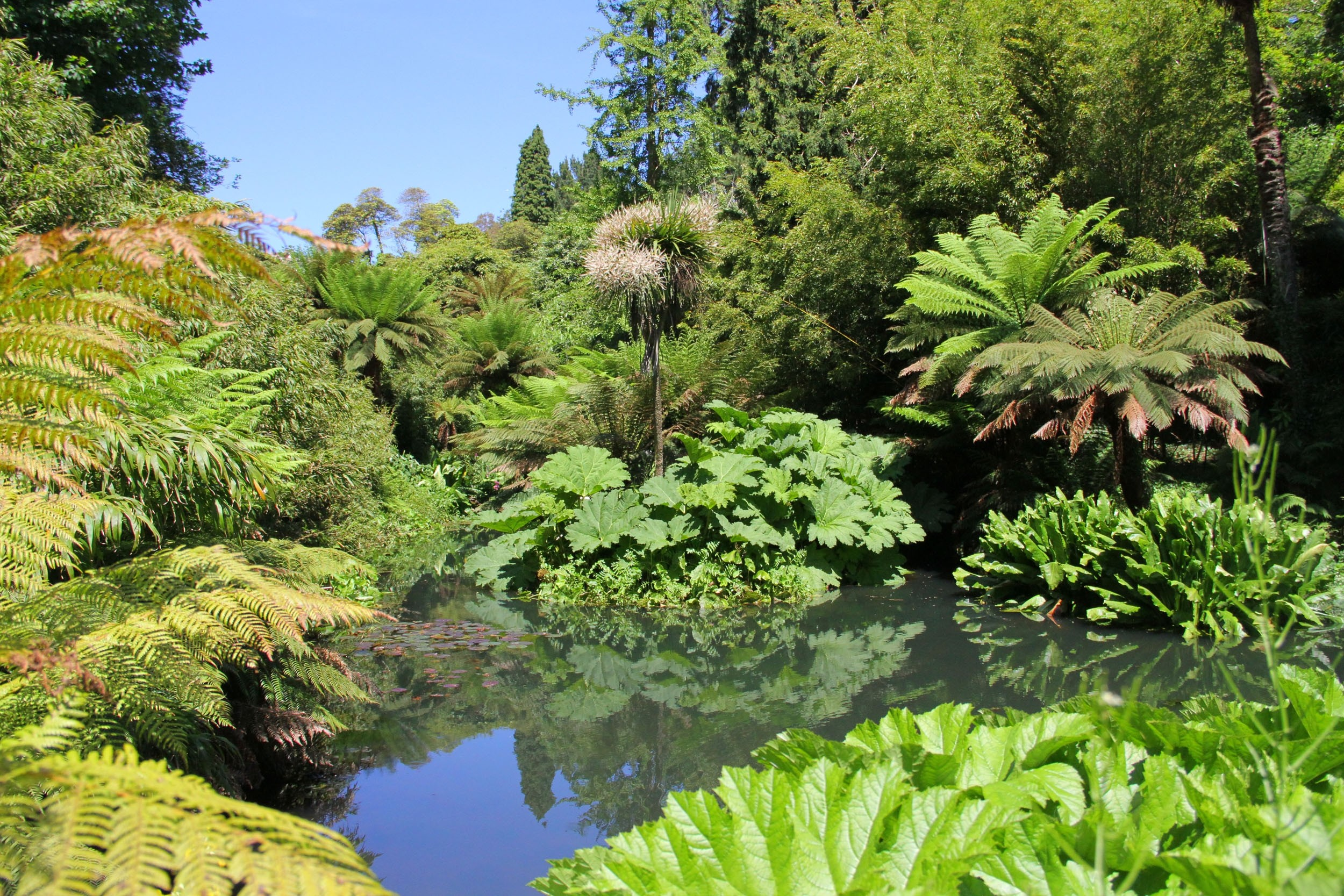 The Lost Gardens Of Heligan, Cornwall: Family day out