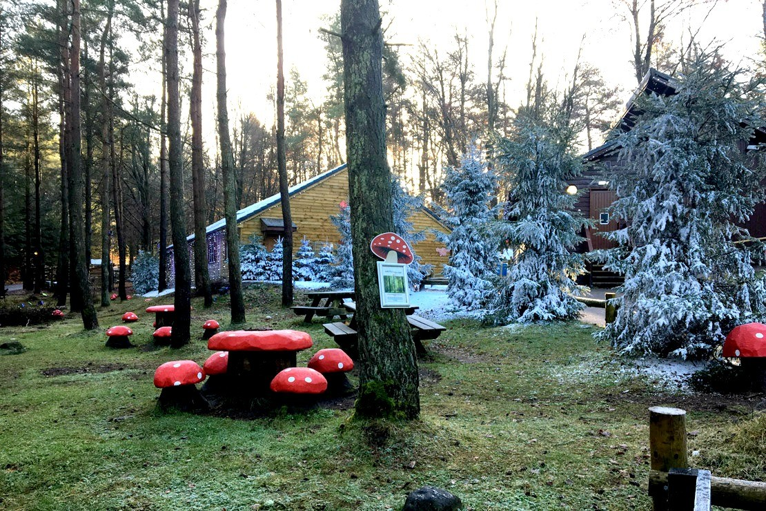 Center Parcs Winter Wonderland getaway