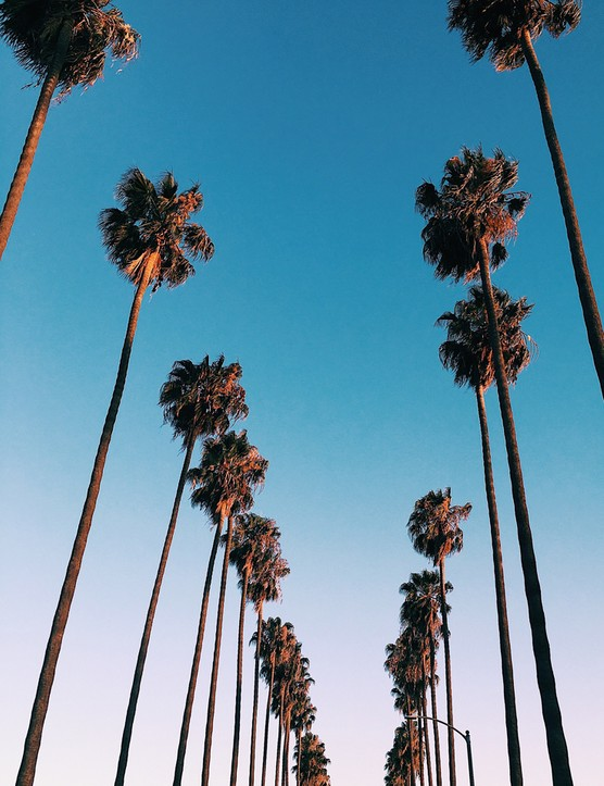 Los Angeles: 10 Awesome Things To Do With Kids