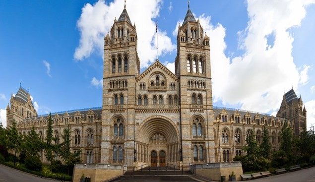 The Natural History Museum, London (Pict: NHM)