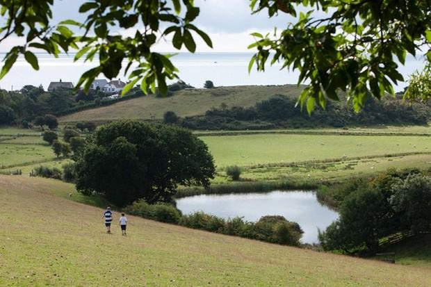 A stroll across the meadows...