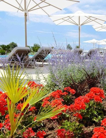 Sani Resort in Greece introduce the Sani Dunes hotel