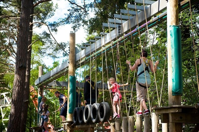 Ropework X at Landmark Forest Adventure Park